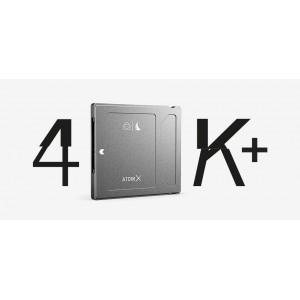 ANGELBIRD DISQUE DUR SSD AVPRO MKIII 500GB